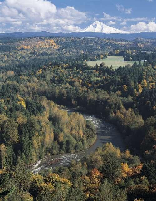 Mt Hood and Sandy River landscape in Oregon free photo