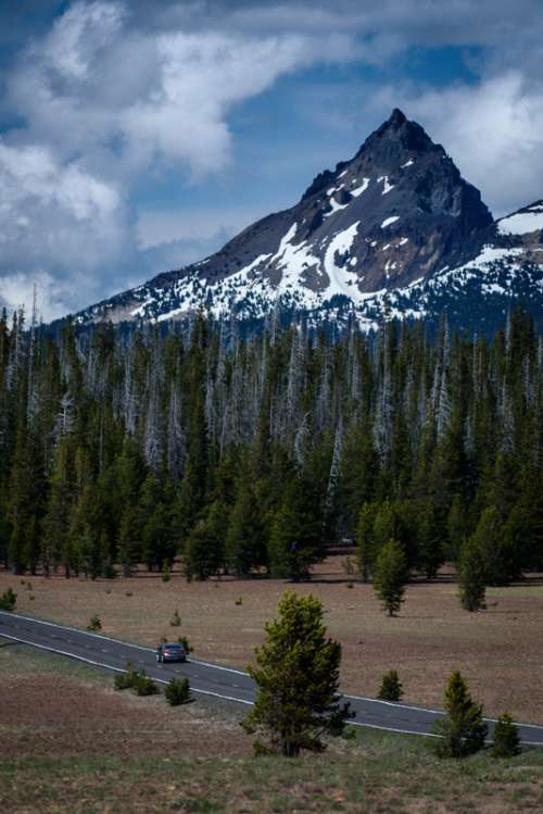 Mountain and Forest landscape in Colorado free photo