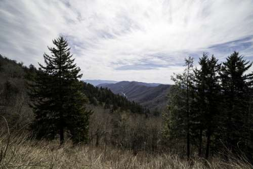 Mountain Landscape at the Newfound Gap in Great Smokey Mountains National Park, Tennessee free photo