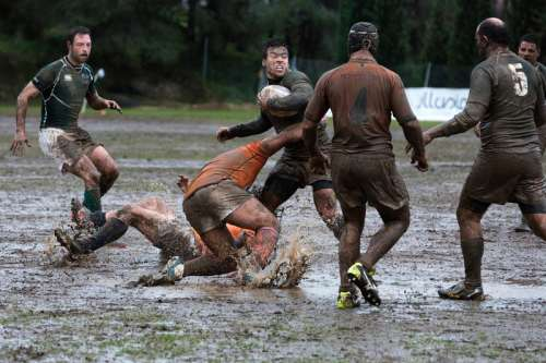 Muddy Rugby Players free photo