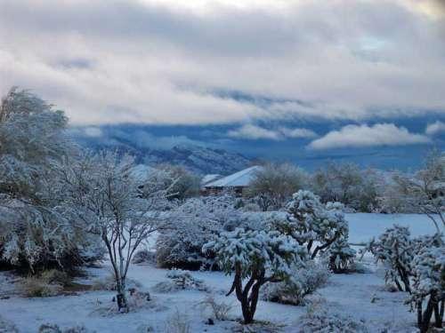 Oro Valley snowfall in 2011 in the Santa Catalina Mountains in Arizona free photo