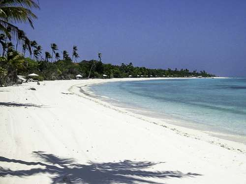 Pamalican Island beach landscape in the Philippines free photo