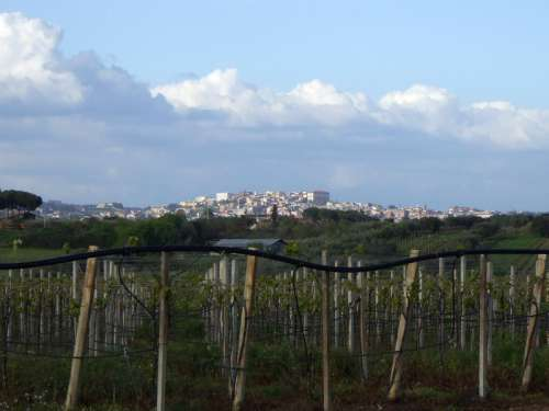Panorama of Velletri From the field in Italy free photo