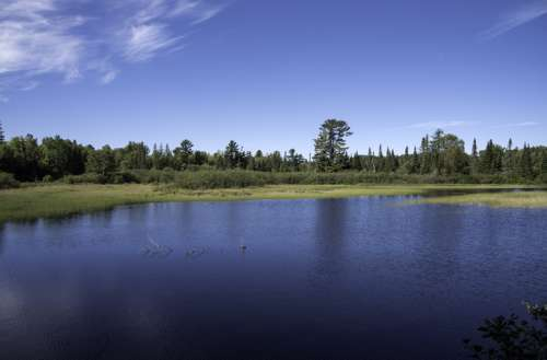 Peshekee River landscape in Van Riper State Park, Michigan free photo