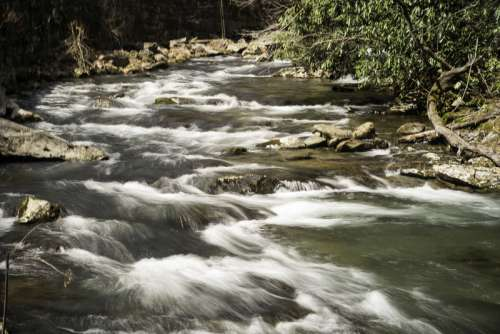 Rapids on the River in Great Smoky Mountains National Park, North Carolina free photo