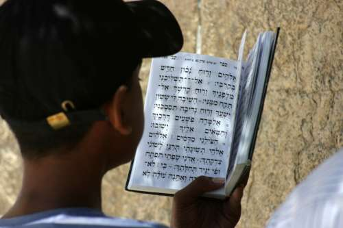 Reading a prayer book in Jerusalem, Israel free photo