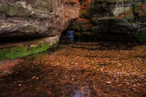Red Leaves in the waters of the gorge at Pewit's Nest, Wisconsin free photo