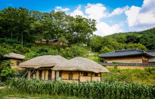 Rural Village in South Korea free photo