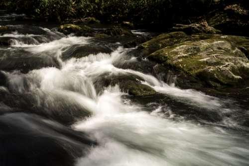 Rushing water of the River at Great Smoky Mountains National Park, North Carolina free photo