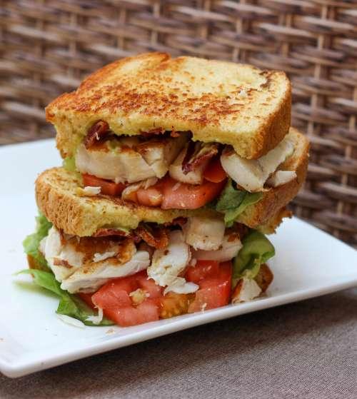 Salad Sandwich on a plate free photo