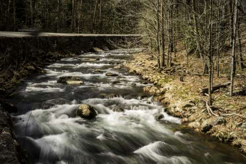 Scenic Rapids on the river in Great Smoky Mountains National Park, North Carolina free photo