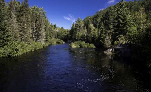 Scenic Riverway landscape at the Peshekee River, Van Riper State Park, Michigan free photo