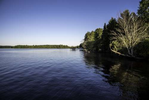 Shoreline and trees in Chequamegon National Forest, Wisconsin free photo