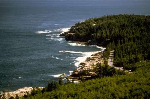 Shoreline Landscape at Acadia National Park, Maine free photo