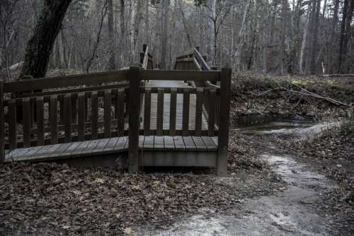 Small Wooden Bridge across the creek at Hawn State Park, Missouri free photo
