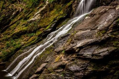 Smooth running water at Shenandoah National Park free photo