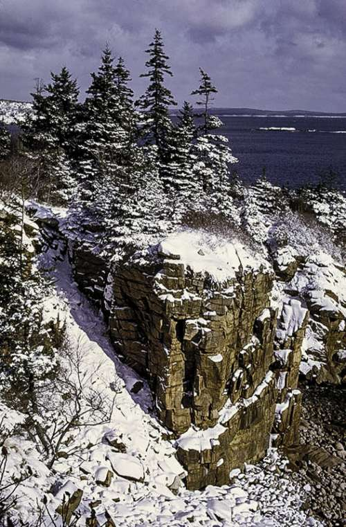 Snow and winter landscape in Acadia National Park, Maine free photo