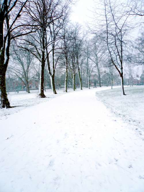 Snow in Spinney Hill Park in Leicester, England free photo