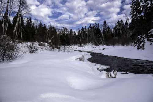 Winter Scenic with trees with snow and ice in Temperance River State Park, Minnesota free photo