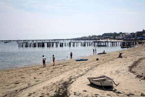 Spiaggia Cape Cod coast in Massachusetts free photo