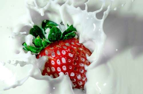 Strawberry splashing in milk free photo