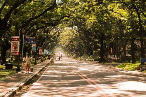 Street with trees and people in Manila, Philippines free photo