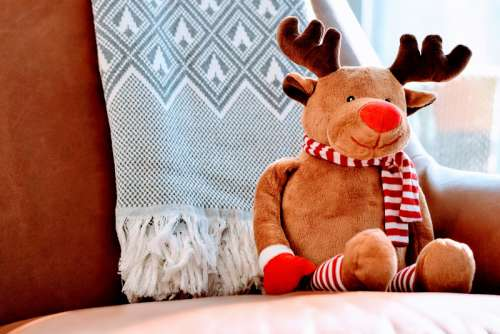 Stuffed Rudolph the Red Nosed Reindeer Christmas free photo