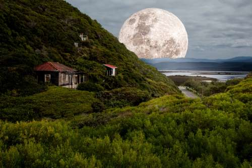Super Moonrise over the hill free photo