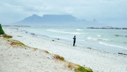 Surfer standing and looking at the waves in Cape Town, South Africa free photo