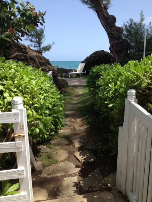Tropical Vacation House in Puerto Rico free photo