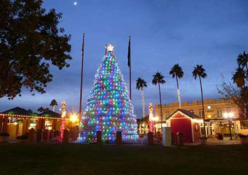 Tumbleweed Christmas tree in Chandler, Arizona free photo