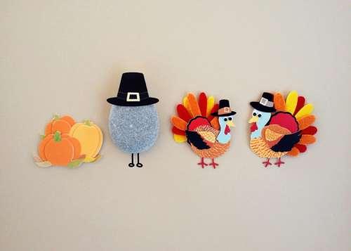 Turkey Art in pilgrim hats of Thanksgiving free photo