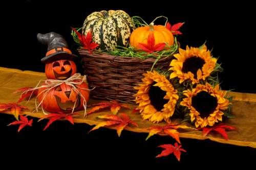 Two small Halloween Pumpkin Jack-O-Lantern with basket of pumpkins free photo