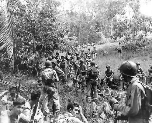 US Marines during the Guadalcanal Campaign in World War II free photo