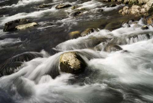 Water and Rapids rushing in the river at Great Smoky Mountains National Park, North Carolina free photo