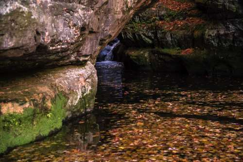 Waterfall within the gorge and leaves in the water at Pewit's Nest, Wisconsin free photo