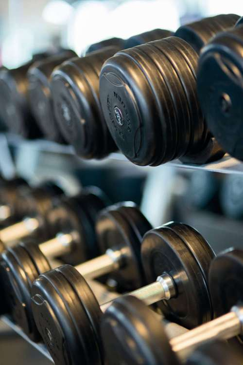Weights on a rack free photo