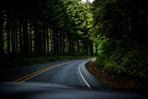 Winding Roadway in Oregon free photo
