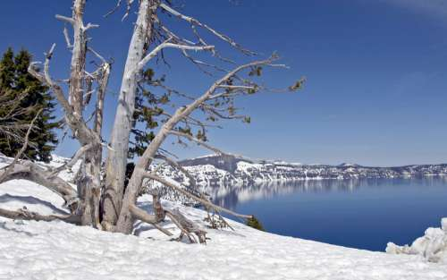 Winter Scenery at Crater Lake National Park, Oregon free photo