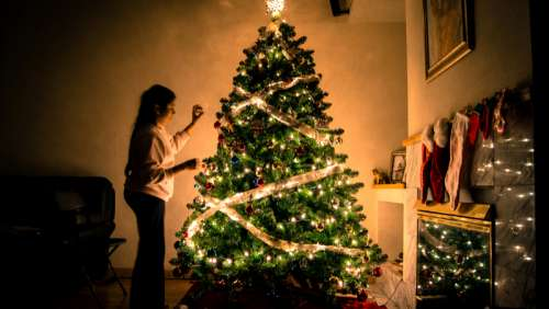 Woman decorating Ornamented Christmas Tree free photo