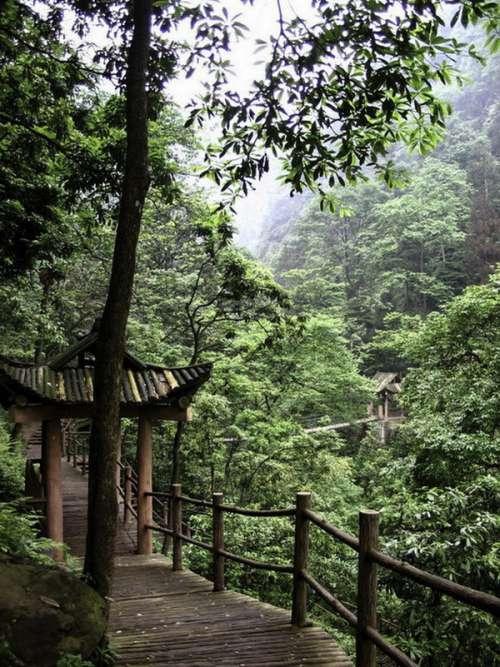 Wooden bridgewalk over the Crystal Stream in Mount Emei, Sichuan, China free photo
