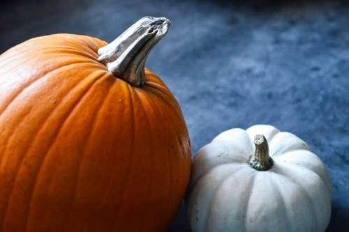 Orange and white pumpkin on grey background