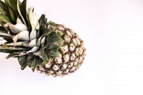 Pineapple on the white background from the top