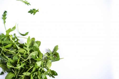 Rucola on left side on white background