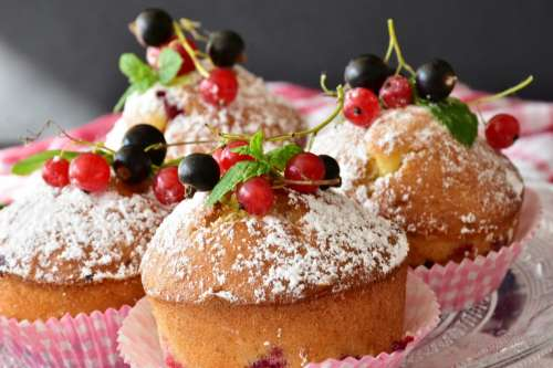Muffin cake with berries on the top