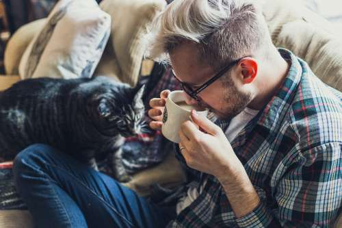 Adult Sofa Man Cat Pet Couch Coffee Indoors