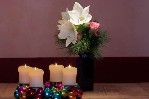 Advent Wreath Amaryllis White Flowers Flower Plant