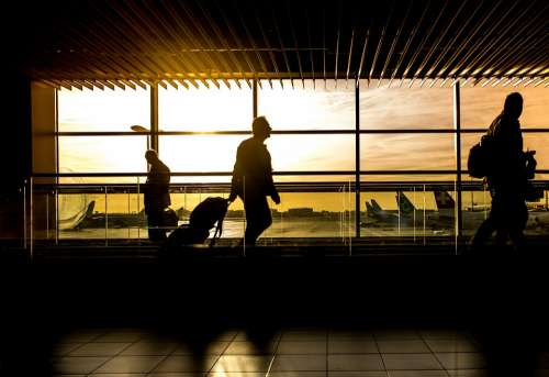 Airport Man Travel Traveler Passenger Person