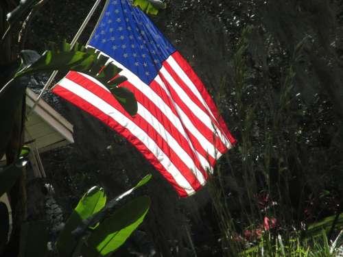 American Flag Usa Symbol America National United