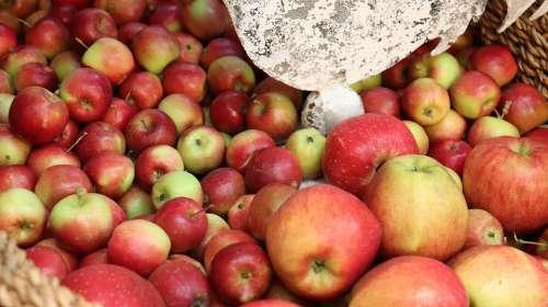 Apple Asia Fruits Korea Apple Fruits Apple Farm